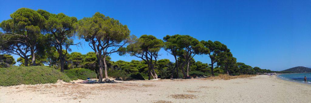 Plaża Schinias - jedna z najpiękniejszych plaż Attyki