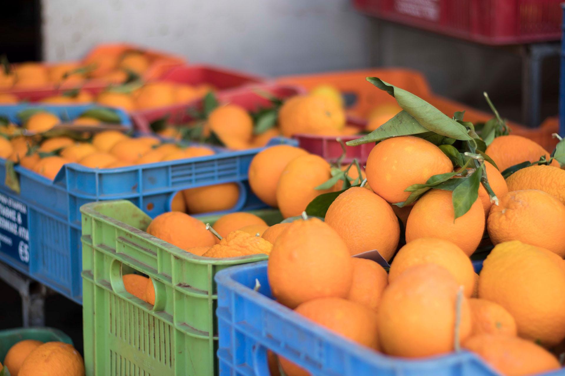 Pomarańcze cypryjskie